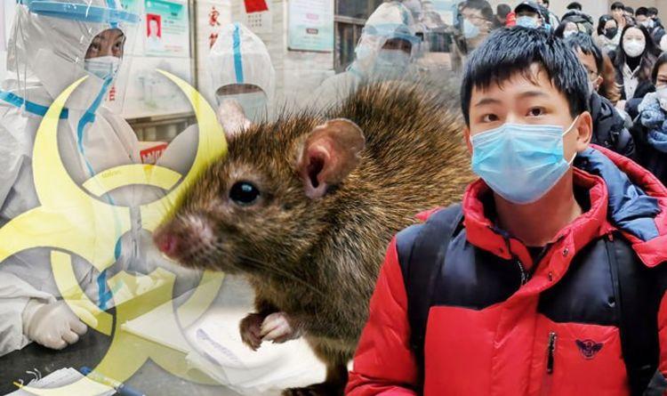 Bubonic Plague: Chinese city issues black death level three plague ...