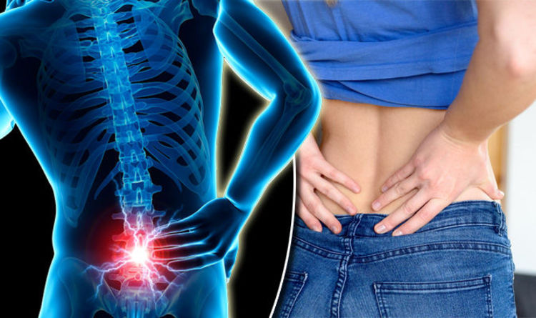 Back pain symptoms - signs a lower back condition could be serious