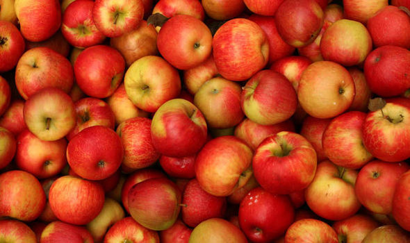 Top 10 facts about apples | Ex...
