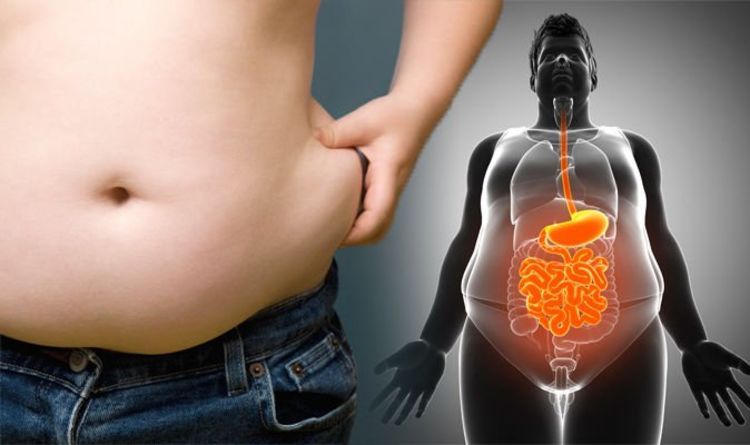 How To Get Rid Of Visceral Fat Foods That Can Help Reduce The