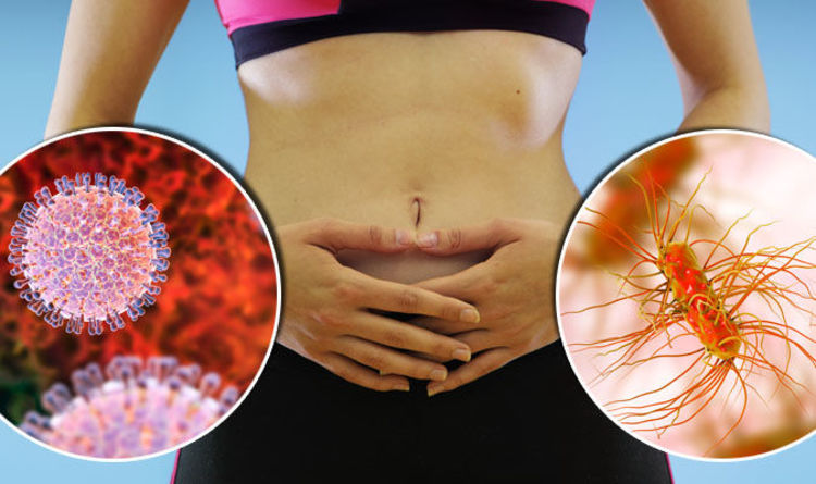 Vomiting and diarrhoea: Gastroenteritis symptoms   Express.co.uk