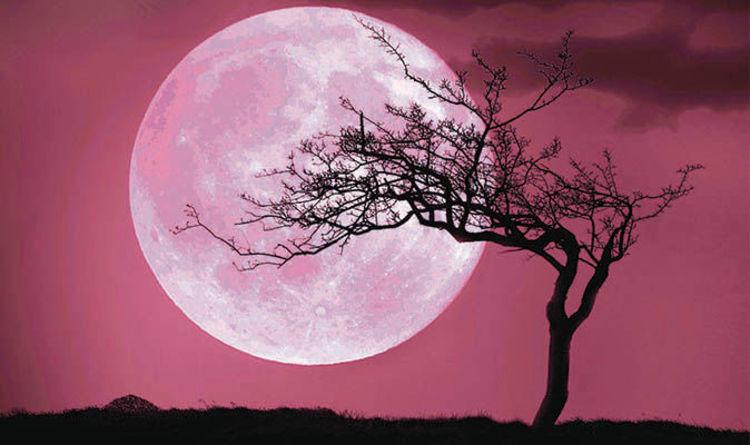 Pink Moon April 2017 Full Rises Tonight But Will It Turn