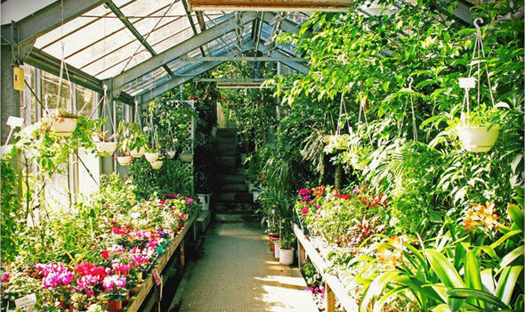 Alan Titchmarsh On The Advantages Of A Greenhouse Express Co Uk