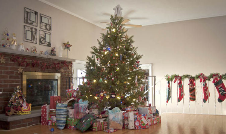 When Should You Put Up A Christmas Tree Why Do We Decorate Trees With Lights And Baubles Express Co Uk