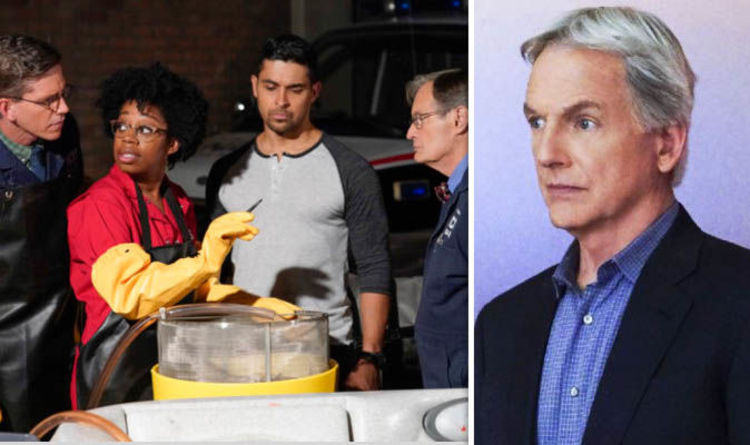 NCIS season 17 release date: Will there be another series of NCIS