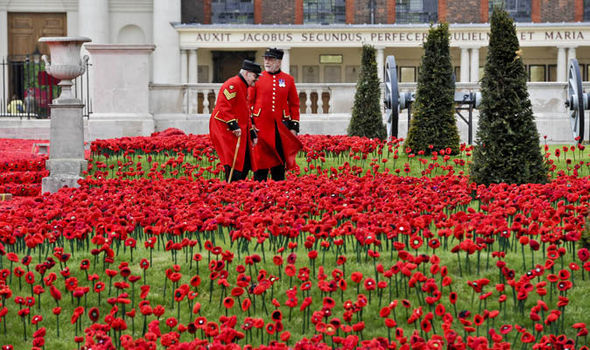Chelseas red carpet a knitted field of poppies uk news poppies laid at the royal hospital mightylinksfo