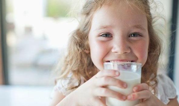 download milk junkies