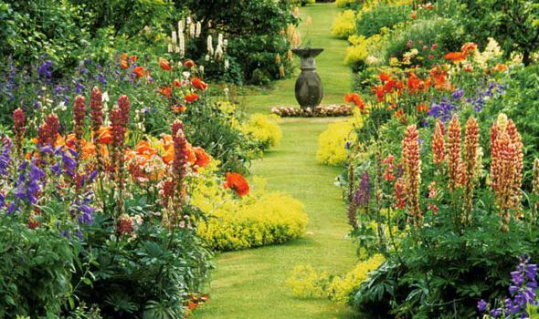 Alan Chmarsh Horticulture Flower Garden