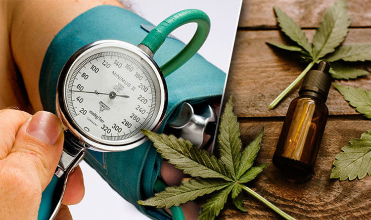 High blood pressure: CBD oil diet could prevent hypertension