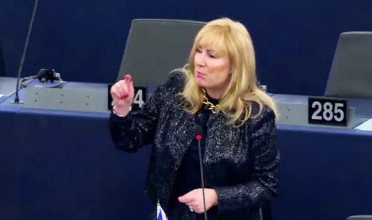 Image result for UK MEP Janice Atkinson