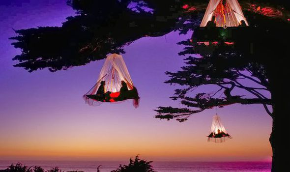 249cd41ae6 Sleeping dangling from a tree is an incredible experience