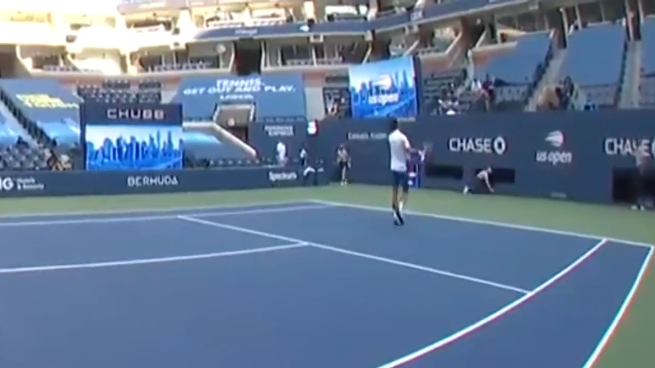 Novak Djokovic Disqualified From Us Open After Hitting Line Judge Videos Express Co Uk