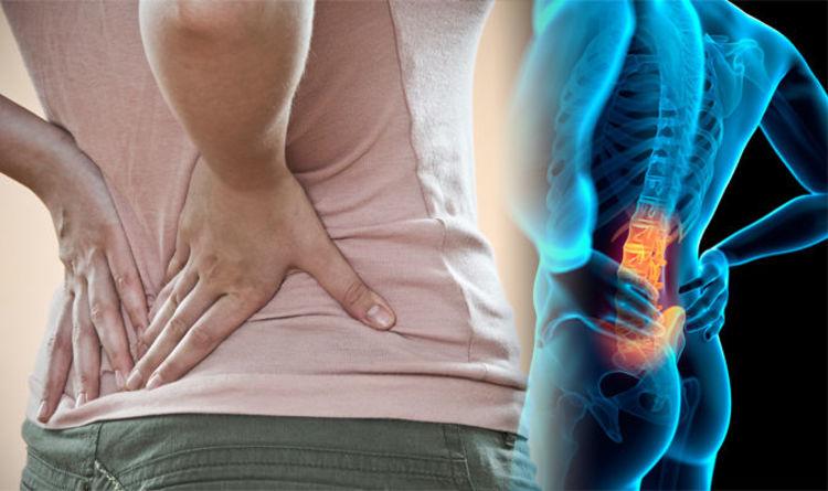 Spondylitis back pain and sex