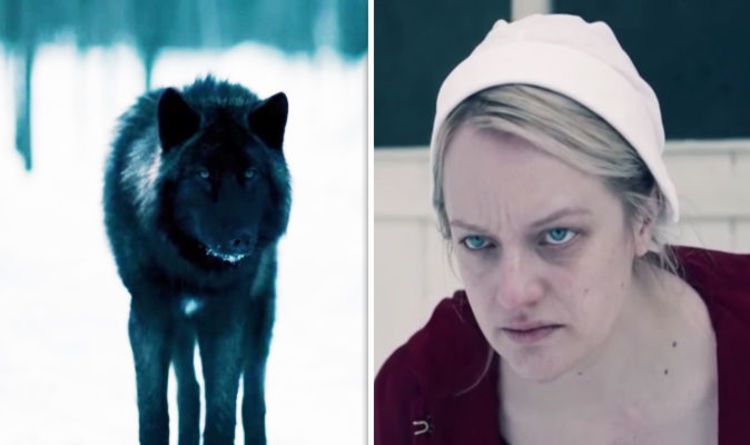 The Handmaids Tale Season 2 Episode 11 What Does The Wolf