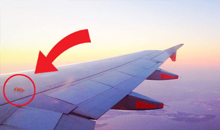 flight secrets why this tiny secret wing hook on a plane could save