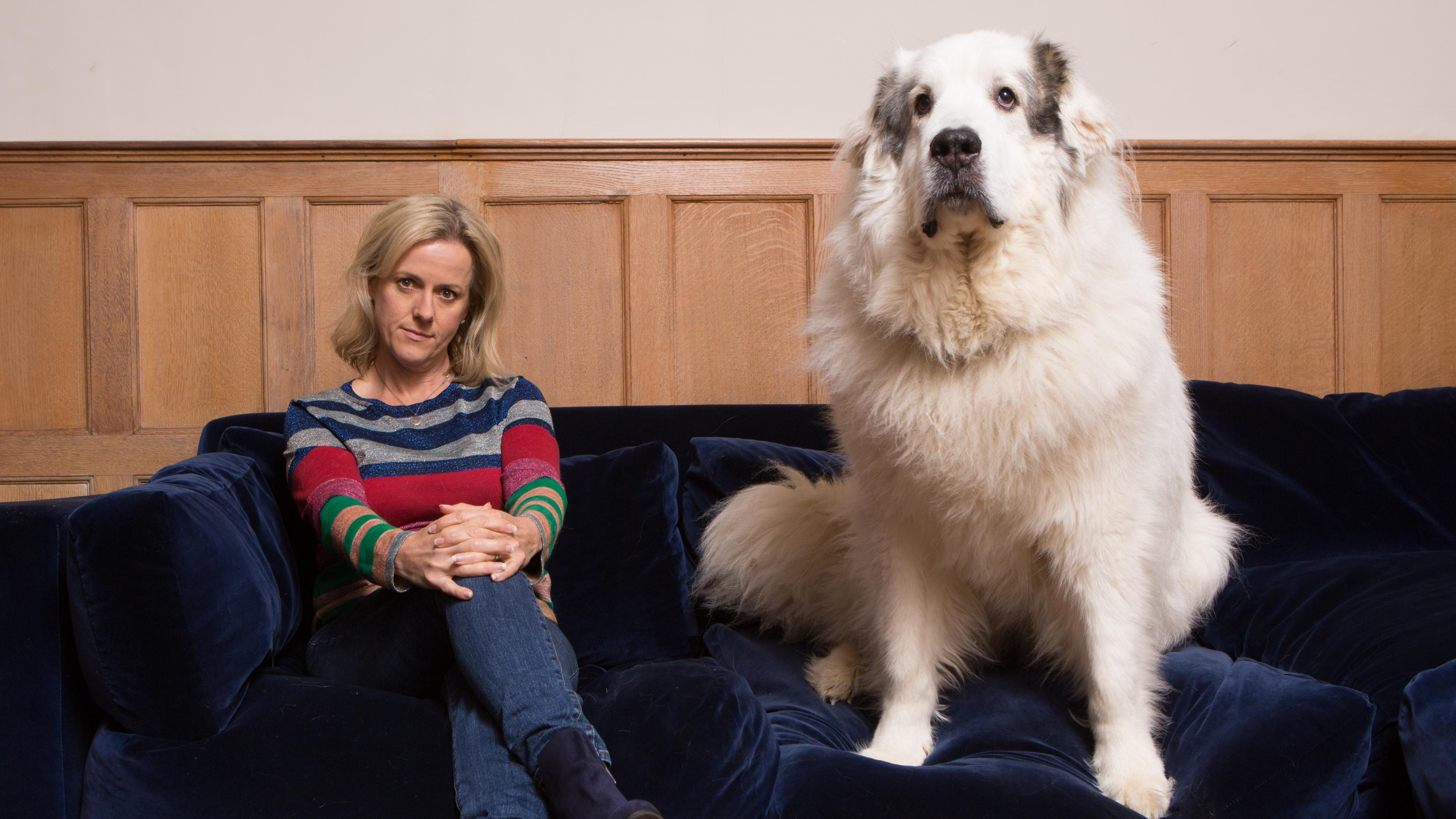 How a 58kg rescue dog changed my life  By Jojo Moyes | Times2 | The