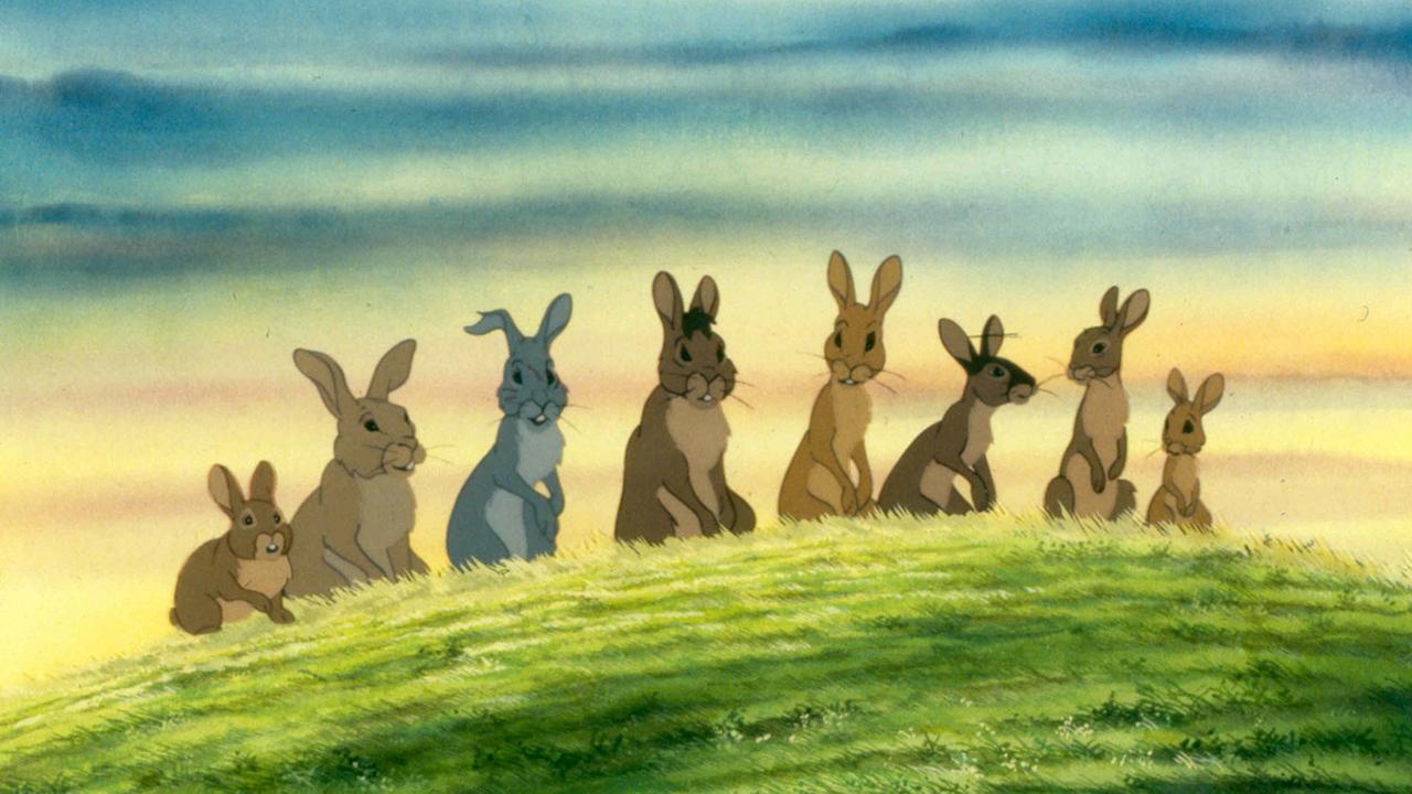 animated bunny movies
