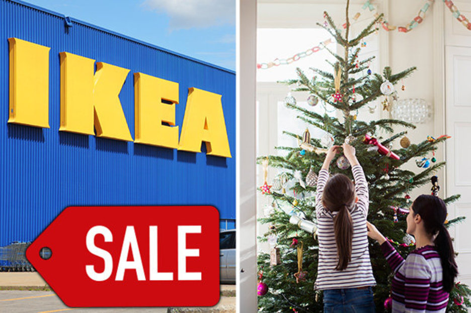 IKEA is selling real Christmas trees for £5 – here's how to get them