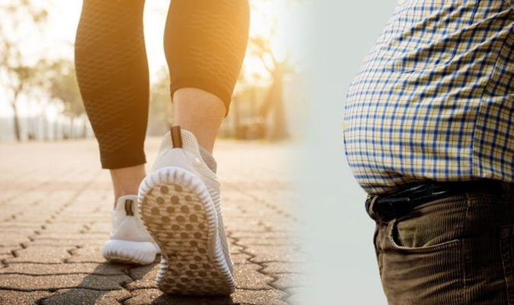 Weight loss: How to burn belly fat fast - key exercises for
