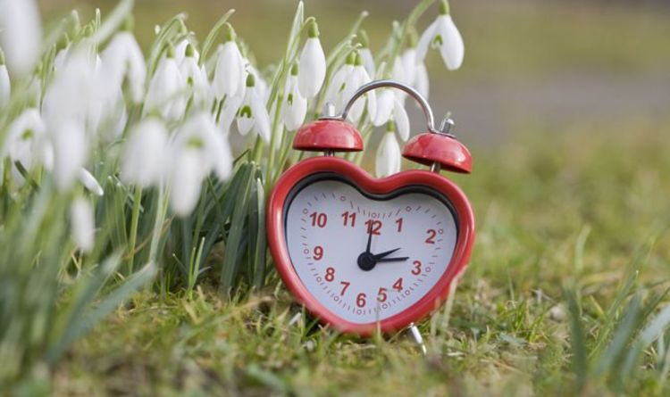 Image result for clocks spring forward