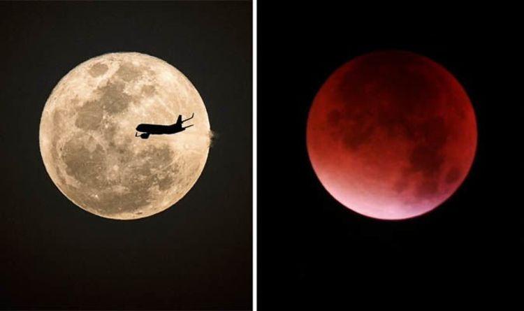 Super Blood Moon 2019 When Is Next Rare Super Blood Moon Lunar