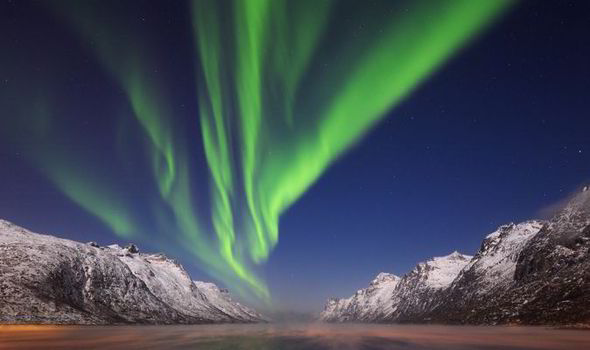 MAGICAL See The Northern Lights In Arctic Norway