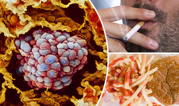 Nine Out Of 10 Cancer Cases Are Caused By Unhealthy Living Not Bad
