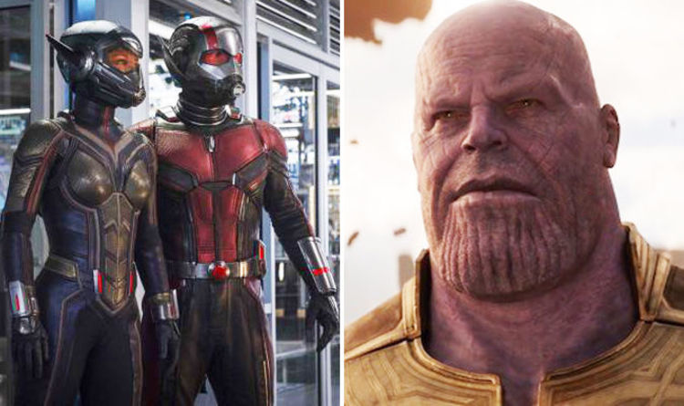 Ant-Man and the Wasp DEATHS: Here's who DIED in Thanos' Snap   Films