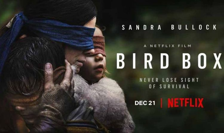 Bird Box On Netflix Review A Laborious Horror That Doesn T Quite
