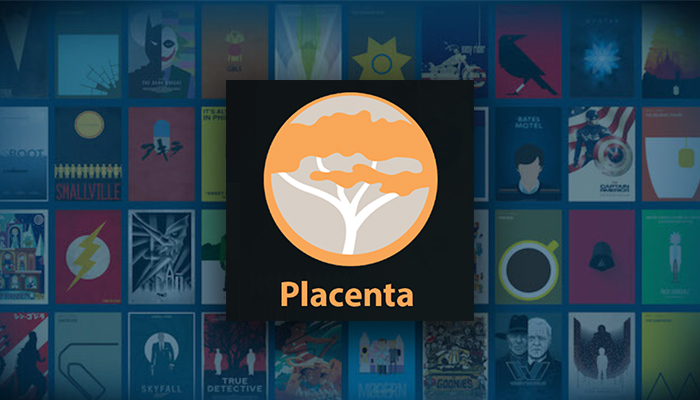 12 Easy Steps to Install Placenta Kodi Addon in 2019 (with