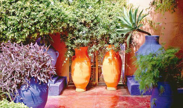 Ordinaire Alan Titchmarsh, Grow, Mediterranean, Plants, Garden