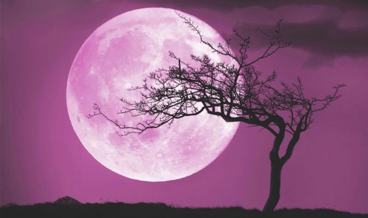 Pink Moon 2019 meaning: Why is April Full Moon called Pink