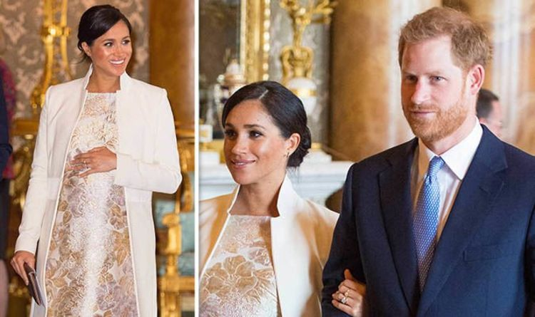 Meghan Markle TWINS: Does THIS slip from Harry finally confirm Royal