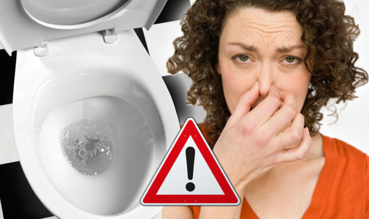 Bowel cancer symptoms: Bad smell poo sign of healthy stool
