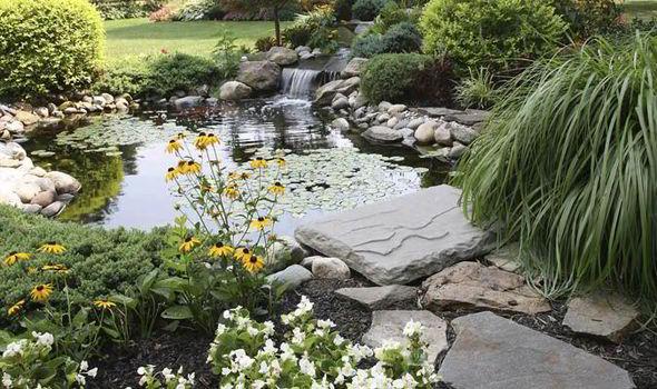 Bon A Garden Pond