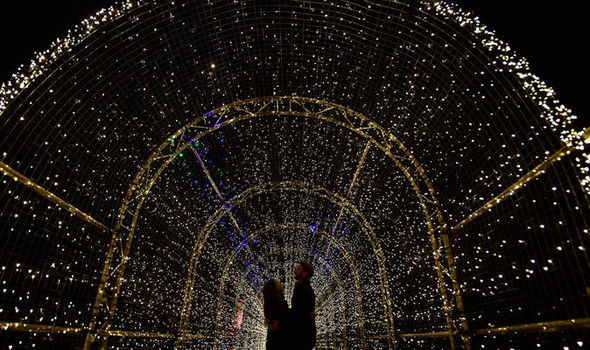 Image result for christmas at kew lights