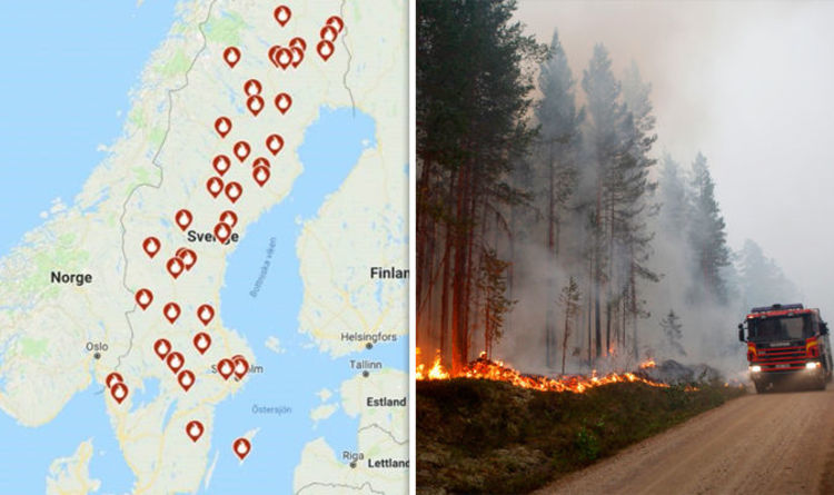 Image result for sweden wildfire