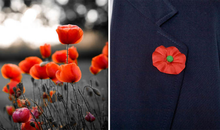 Remembrance Day 2018 How Should You Wear A Poppy Uk News
