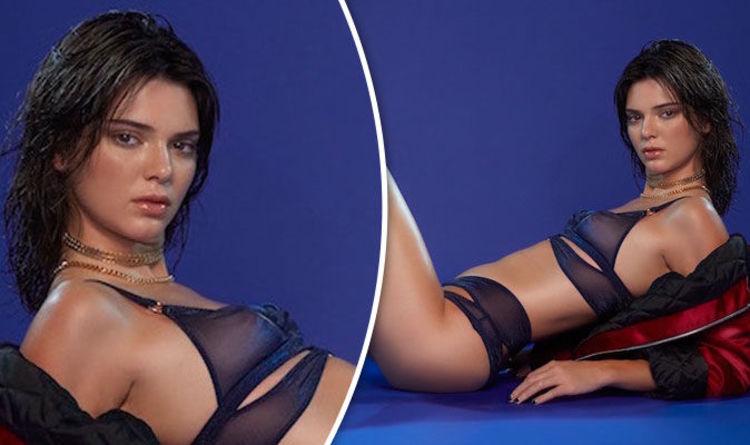 Wife Brunette sheer lingerie