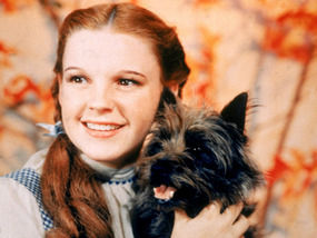 Dark side of Oz: The exploitation of Judy Garland | Express