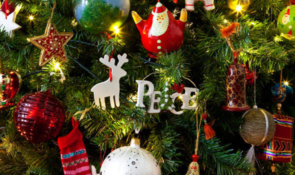 Top 10 facts about Christmas trees | Express.co.uk