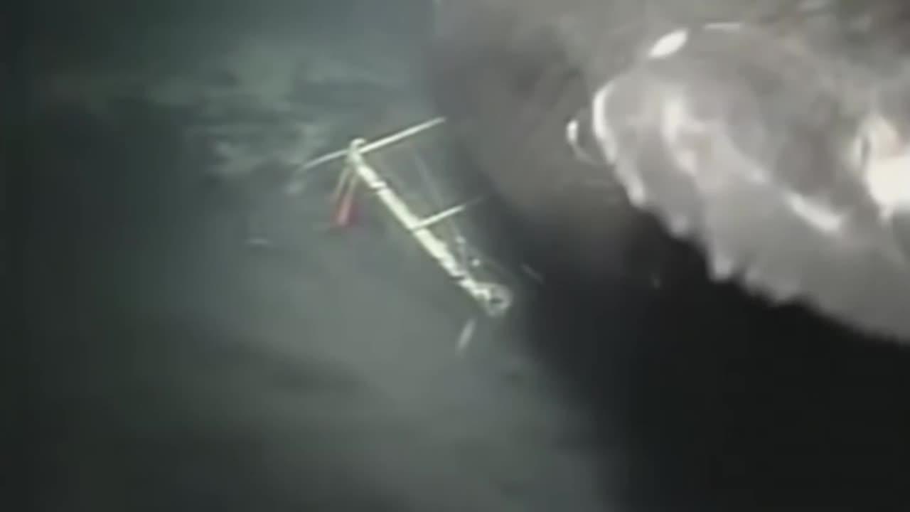 'Megalodon 100 tonne shark' filmed in Mariana Trench