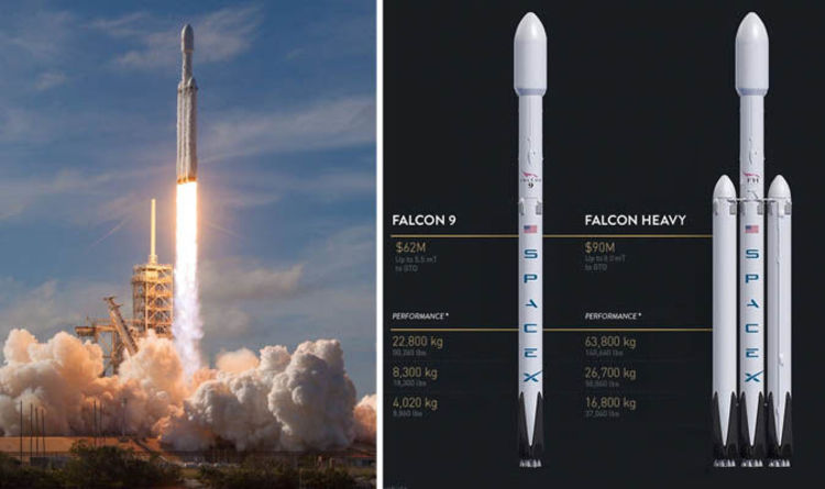 Image result for falcon rockrt